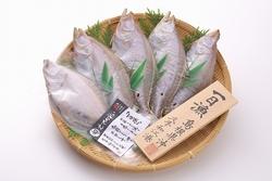 島根県大田市のお土産大田ブランド認定商品 「一日漁」のえてかれい一夜干